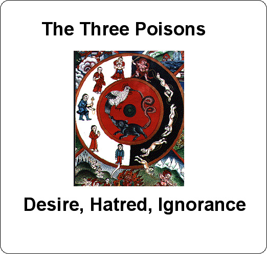 Three Poisons Image